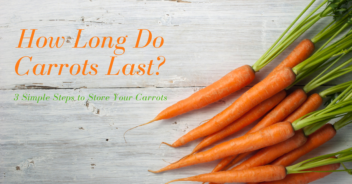 How Long Do Carrots Last? 3 Simple Steps to Store Your Carrots