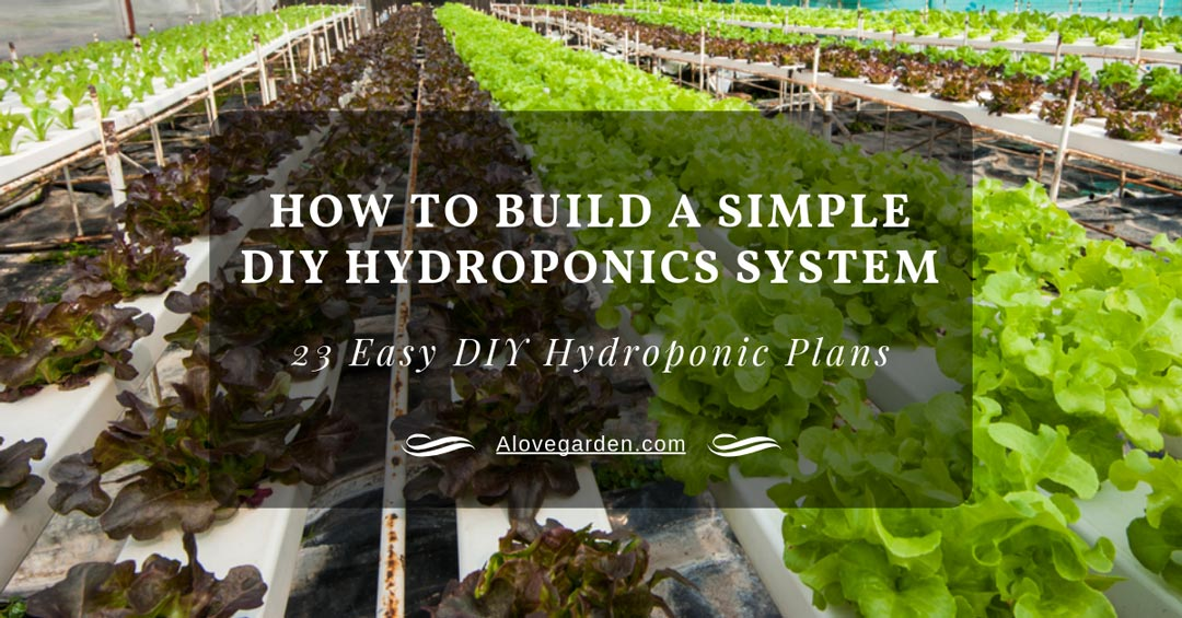 How To Build A Simple Diy Hydroponics System 23 Easy Diy