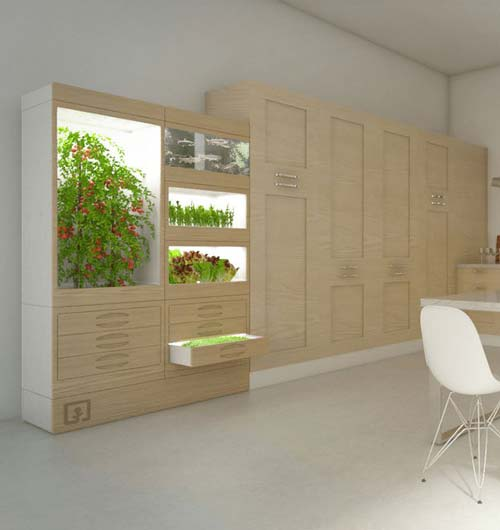 Indoor Cupboards Hydroponic