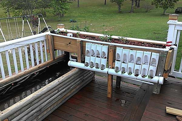 Raised Beds Aquaponics DIY