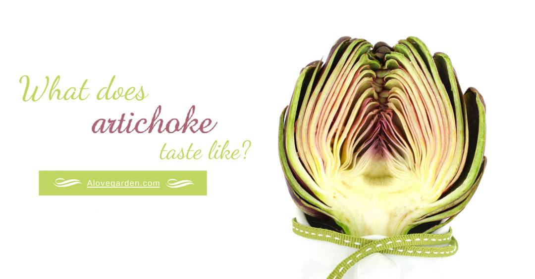 what does artichoke taste like