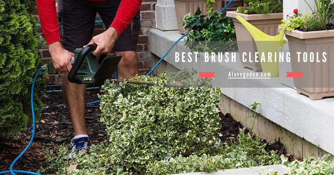 best brush clearing tools