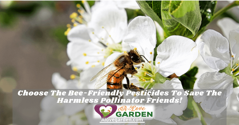 bee-friendly pesticides